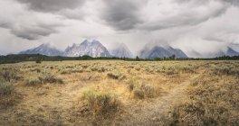 USA, Wyoming, Grand Teton National Park — Stock Photo