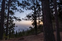 Riserva naturale di Spagna, Tenerife, Las Lagunetas al Parco nazionale del Teide — Foto stock