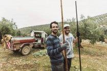 Men posing with stick for olive harvest. Jaen, Spain — Stock Photo