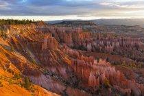 Соединенные Штаты Америки, Utah, Bryce Canyon National Park, hoodoos in amphitheater at dawn — стоковое фото