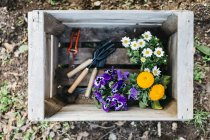Box with flowers and tools — Stock Photo
