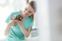 Veterinarian assistant holding tortoise in veterinary clinic — Stock Photo