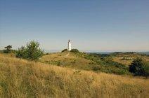 Deutschland, Hiddensee, Dornbusch, ländliche Landschaft und Leuchtturm im Hintergrund — Stockfoto