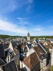 France,  Departement Indre-et-Loire, Loches aerial view with typical architecture and rooftops — Stock Photo