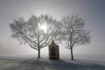 Германия, Бавария, Pfaffenwinkel, Мороз на путь паломника к Andechs — стоковое фото