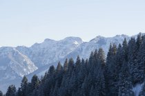 Germany, Nesselwang, Allgaeu Alps, view to snow-covered summits — Stock Photo