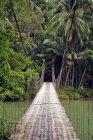 Indonesia, Java, puente colgante en selvas - foto de stock