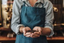 Man wearing apron holding handful of coffee beans — Stock Photo