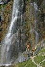 Австрия, Тироль, Рофан, турист, стоящий у водопада Далфаз с поднятыми руками — стоковое фото