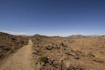 Вид на песчаные поля в дневное время — стоковое фото