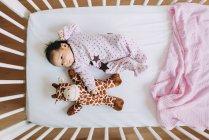 Niña bebé recién nacido acostado en la cuna con una jirafa de peluche - foto de stock