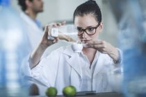 Destillator zur Messung von Koriandersamen für die Gin-Produktion — Stockfoto