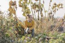Mujer joven con el libro relajante en jardín - foto de stock