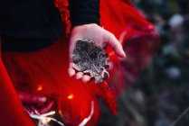 Девушка в красном платье Холдинг замороженных дуб отпуск — стоковое фото
