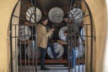 Two confident men tasting whiskey in distillery — Stock Photo