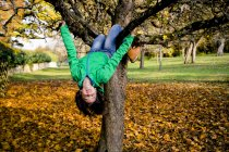 Girl climbing on tree in autumn with eyes closed — Stock Photo