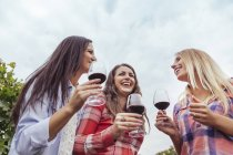 Três jovens mulheres felizes em uma vinha segurando copos de vinho tinto — Fotografia de Stock