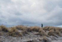 Dänemark, Skagen, Junge in warmer Kleidung in den Dünen — Stockfoto