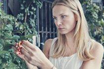 Молодая женщина смотрит на растения на средиземноморской террасе — стоковое фото