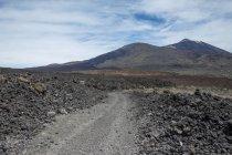 Іспанія, Тенеріфе, грунтовій дорозі через вулканічну — стокове фото