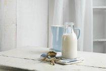 Latte vegano e latte di soia sul tavolo — Foto stock