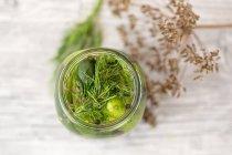 Cetriolini sott'aceto in barattolo con semi di senape, semi di finocchio e l'aneto — Foto stock