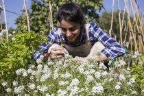 Счастливая женщина работает на ферме, изучает цветы — стоковое фото
