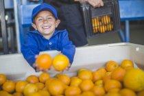 Menino no armazém de fazenda laranja segurando laranjas — Fotografia de Stock