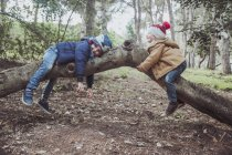 Two boys playing on tree in forest — Stock Photo
