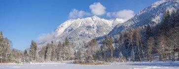 Германия, Oberstdorf, Moorweiher с Rubihorn горы, Gaisalphorn и Шаттенберг в зимний период — стоковое фото