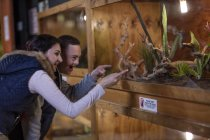 Young man with down syndrome and young woman visiting reptile exhibition — Stock Photo