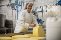 Cheese factory worker labelling cheese wheel — Stock Photo