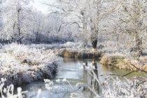 Мальовничим видом з зимовим пейзажем, Німеччина — стокове фото