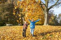 Irmão e irmã jogando folhas de outono no ar — Fotografia de Stock