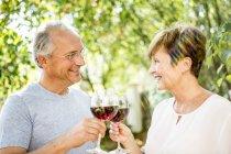 Sorrindo casal sênior clinking taças de vinho tinto ao ar livre — Fotografia de Stock