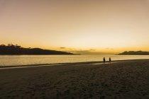 Zwei Personen zu Fuß am Strand — Stockfoto