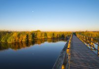 Lake Feder and boardwalk — Stock Photo