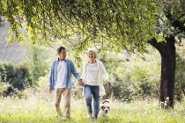 Senior couple on walk with dog in nature — Stock Photo