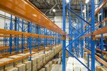 Warehouseman moving in storehouse — Stock Photo