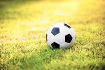 Ballon de football sur une prairie — Photo de stock