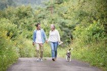Feliz casal sênior na caminhada com o cachorro na natureza — Fotografia de Stock
