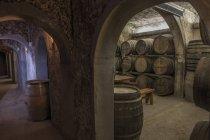 Barris de vinho na adega — Fotografia de Stock