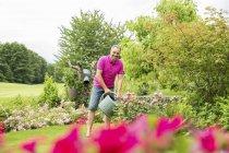 Man watering roses in garden — Stock Photo