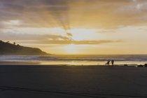Silhouetten von zwei Personen mit Surfbrettern — Stockfoto