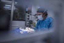 Veterinário em uma cirurgia durante a operação — Fotografia de Stock