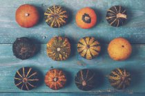 Rows of ornamental pumpkins — Stock Photo