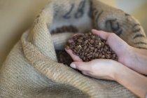 Жіночих рук проведення жменька кавових зерен і мішок — стокове фото