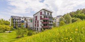Maisons multifamiliales à quartier Français — Photo de stock