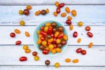 Tomates fraîches colorées — Photo de stock