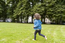 Счастливая девушка бежит по лугу в парке — стоковое фото